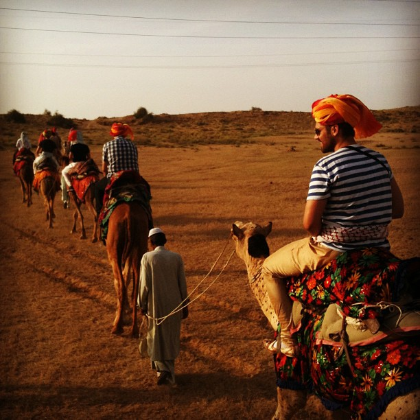 Camels, turbans and … powerlines?